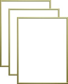 Rama aluminiowa, kolor złota satyna |AL1-9