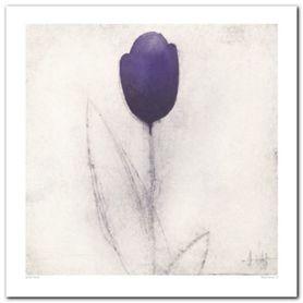 Tulip Series plakat obraz 60x60cm