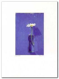 Daisy, 1976 plakat obraz 30x40cm