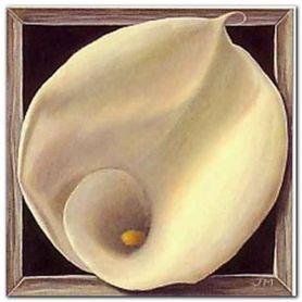 Boxed Calla Lily plakat obraz 38x38cm