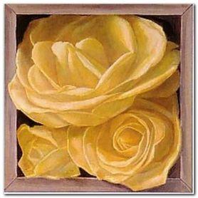 Boxed Yellow Roses I plakat obraz 38x38cm