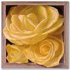 Boxed Yellow Roses I plakat obraz 38x38cm (1)