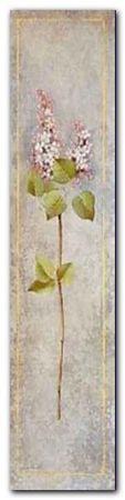 Lilac - Bleu plakat obraz 20x80cm (1)