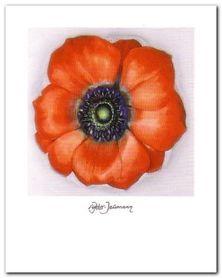 Kwiat IV plakat obraz 40x50cm