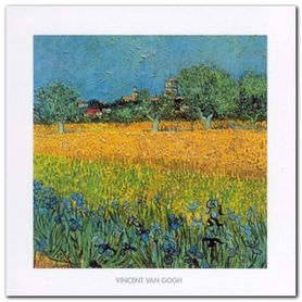 View Of Arles plakat obraz 50x50cm