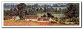 Field Of Poppies plakat obraz 100x35cm