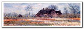 Tulip Fields plakat obraz 100x35cm