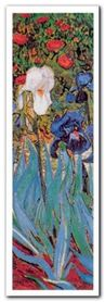 Irises, (Detail) plakat obraz 35x100cm