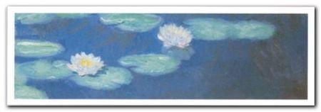Nympheas 1987/1988 plakat obraz 100x35cm (1)