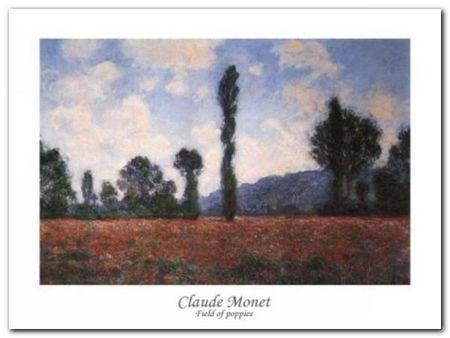 Campo Di Papaveri plakat obraz 80x60cm (1)