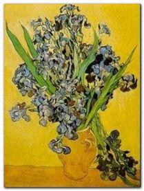Les Iris plakat obraz 60x80cm