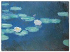 Nympheas, 1897/1898 plakat obraz 80x60cm
