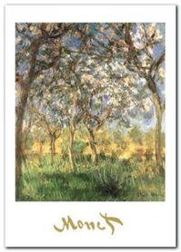 The Springtime plakat obraz 50x70cm