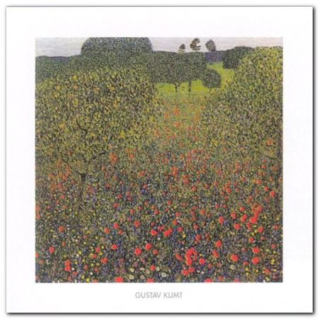 Field Of Poppies plakat obraz 30x30cm (1)