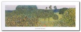 Field Of Poppies plakat obraz 50x20cm