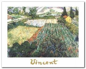 Field Of Poppies plakat obraz 30x24cm