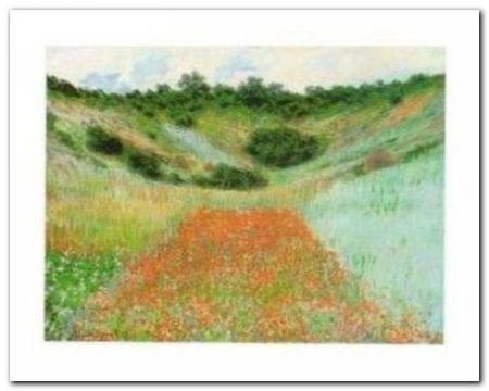 Field Of Poppies plakat obraz 30x24cm (1)
