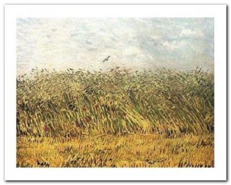 The Wheat Field plakat obraz 50x40cm (1)