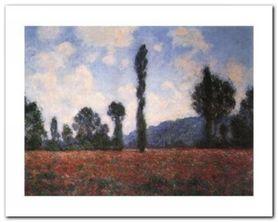 Campo Di Papaveri plakat obraz 50x40cm