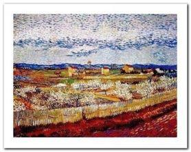 Pesco In Fiore plakat obraz 50x40cm