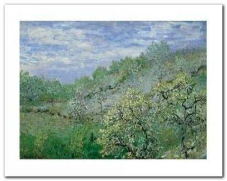 Baume In Blute plakat obraz 50x40cm (1)