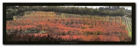 Automne En Provence plakat obraz 95x33cm (1)