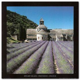 Provence, France plakat obraz 70x70cm
