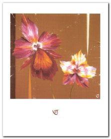 Orchids & Seeds plakat obraz 40x50cm
