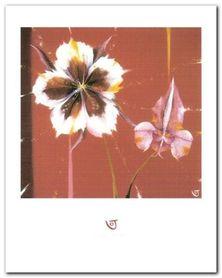 COLUMBINE & ORCHID plakat obraz 40x50cm
