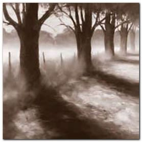 Path By Field plakat obraz 50x50cm