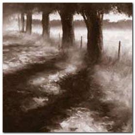 Trees Along Path plakat obraz 50x50cm