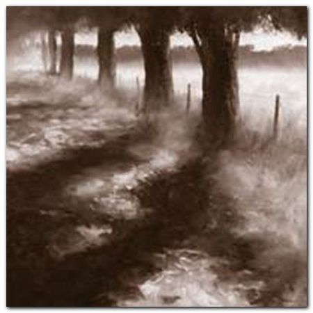 Trees Along Path plakat obraz 50x50cm (1)