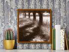 Trees Along Path plakat obraz 50x50cm (3)