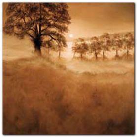 Misty Morning plakat obraz 70x70cm
