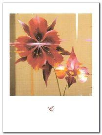 Orchid & Corn Poppy plakat obraz 60x80cm