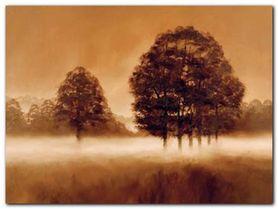 Misty Meadow plakat obraz 80x60cm
