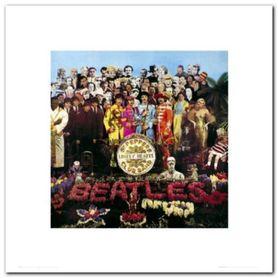 Beatles - Sgt Pepper plakat obraz 40x40cm