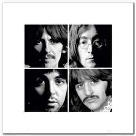 Beatles White Album plakat obraz 40x40cm