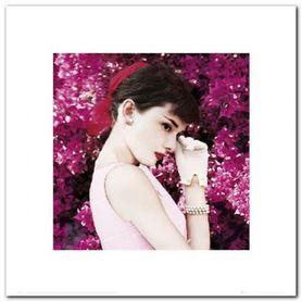 Audrey Hepburn plakat obraz 40x40cm