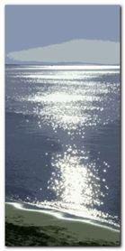 Silver Sea plakat obraz 50x100cm