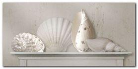 Sea Shells plakat obraz 100x50cm