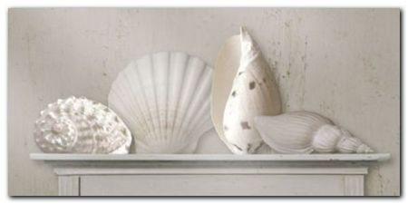 Sea Shells plakat obraz 100x50cm (1)