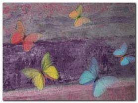 Schmetterling Mauve plakat obraz 80x60cm