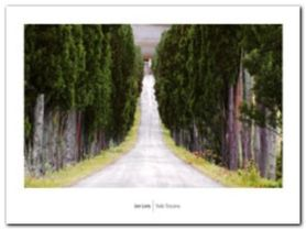 Viale Toscana plakat obraz 80x60cm