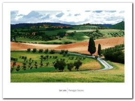 Paesaggio Toscano plakat obraz 80x60cm