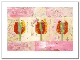 Tulip Variations II plakat obraz 80x60cm