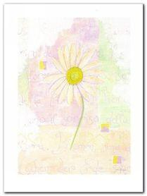 Marguerite plakat obraz 60x80cm