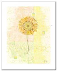 Sunflower plakat obraz 40x50cm