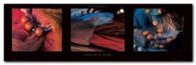 Couleur De Peche plakat obraz 95x33cm