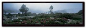 Les Pyrenees plakat obraz 95x33cm